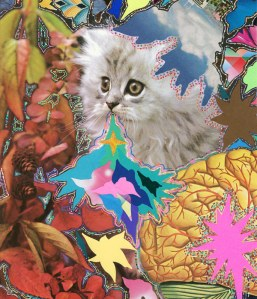 Hisham Akira Bharoocha psychedelic collage cat